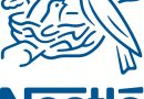 Nestle Nigeria Plc Announces Financial Results for Q3 2019
