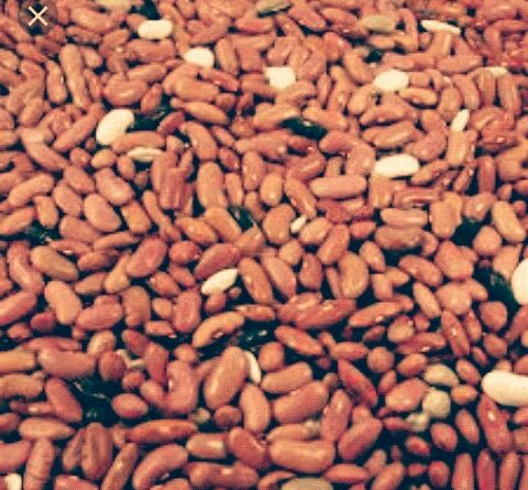 Man in Court for stealing N3700 beans