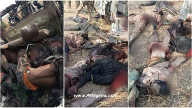 Troops Clear Iswap Boko Haram Terrorists At Marte Axis